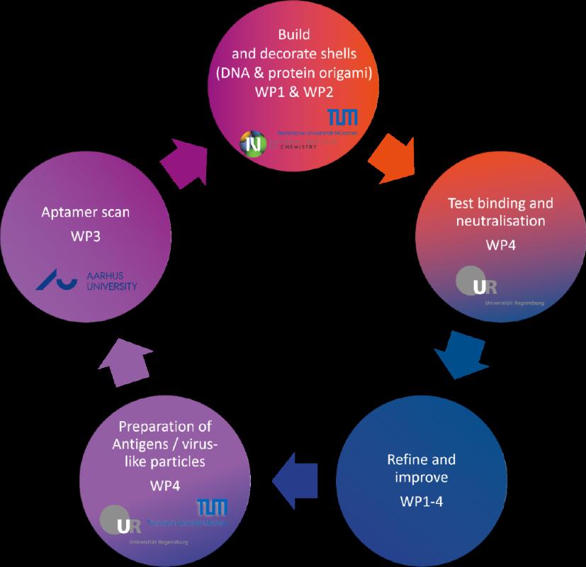 Virofight development cycle